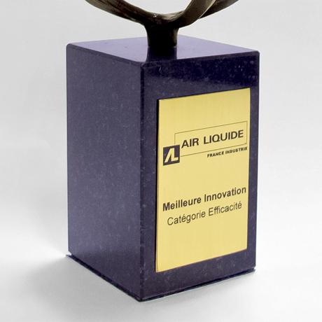 trophée métal-rond-créer ensemble-entreprise-zoom-etiquette dorée